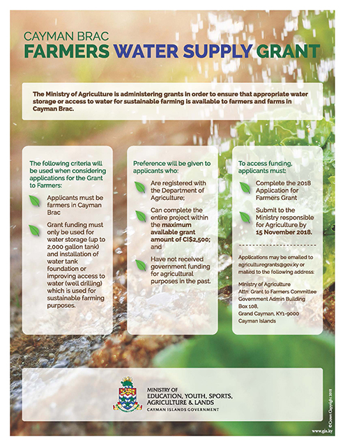 EYSAL Farmers Grant Flyer 2018.